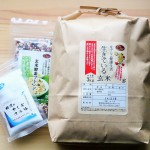 酵素玄米の作り方 生きている玄米使用感想